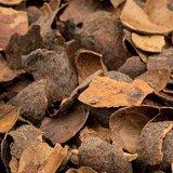 Cacaodoppen - 4m³ €118.74 per m³_